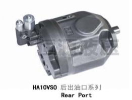 HA10VSO/31后出油口系列